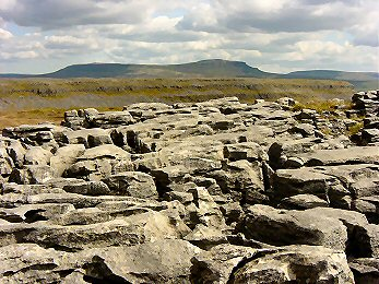 Looking across Moughton Scars to Pen-y-ghent