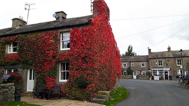 Autumn colour in Thwaite