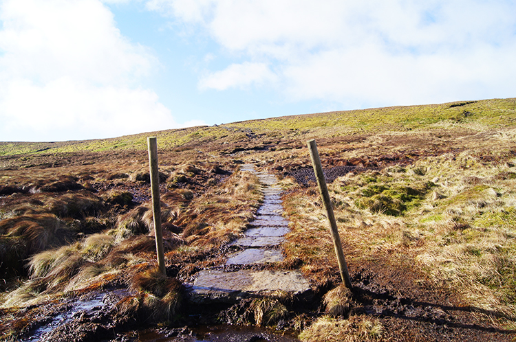 The path on Birks Fell