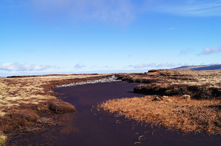 Dry peat bed on Birks Fell