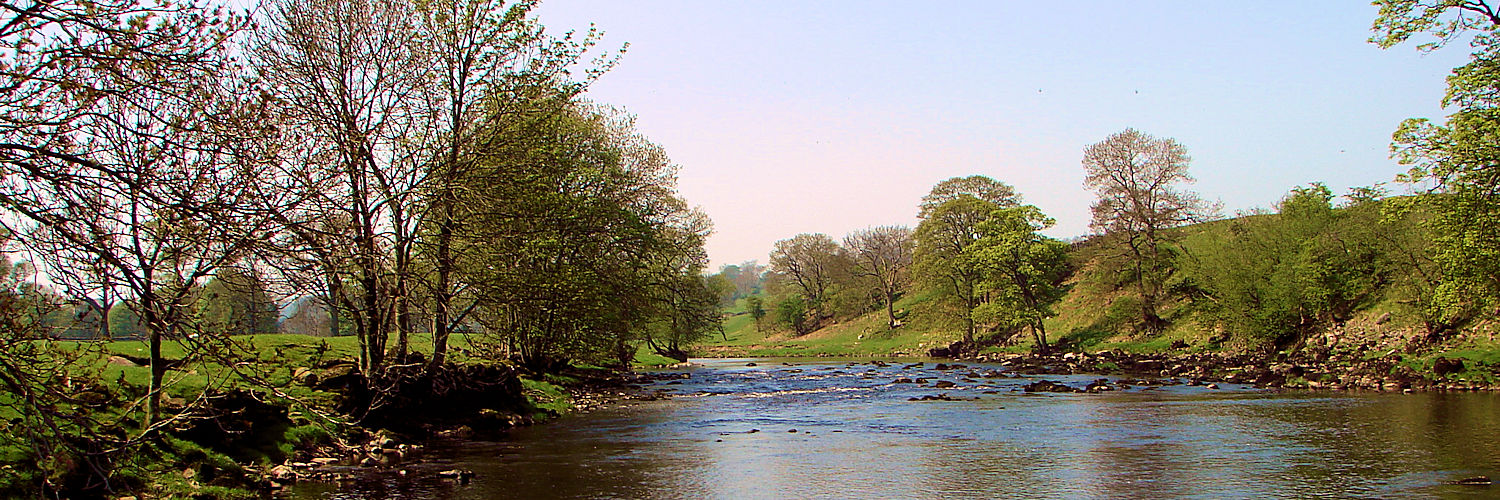 The River Ure near Redmire Force