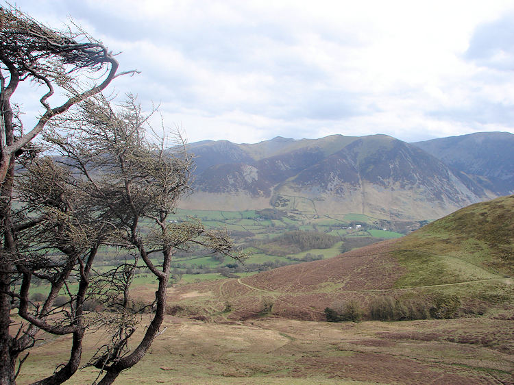 Whiteside and Grasmoor from Fellbarrow