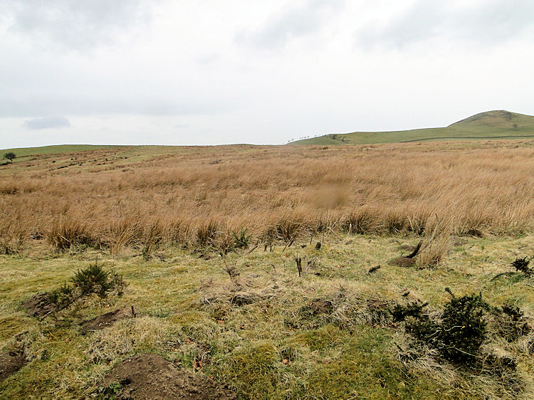 The site of Caermote Roman Settlement