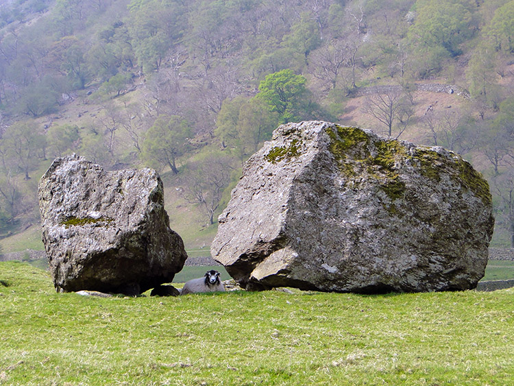 Taking shelter from the sun in the Erratics