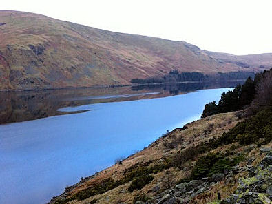 Looking north along Haweswater