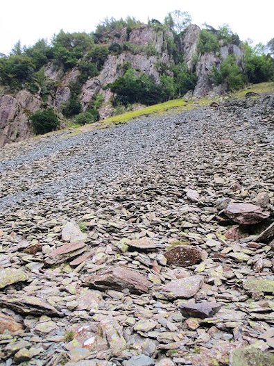 Scree on the slope of Castle Crag
