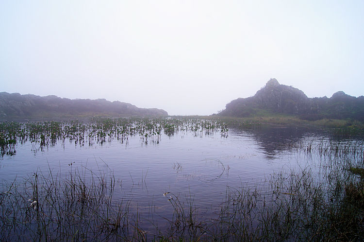 Unnamed tarn between the summit and Innominate