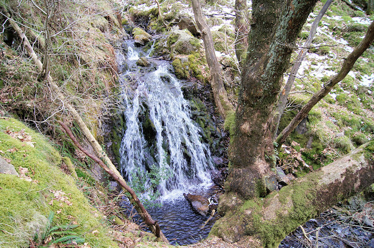 Waterfall in Lane Head Coppice