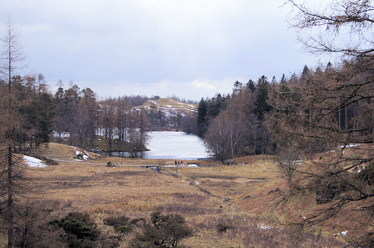 View of Tarn Hows from the south