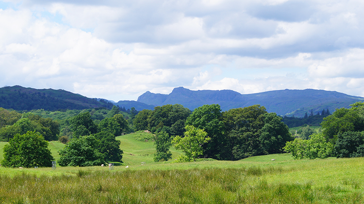 View to the Langdale Pikes from Wray Castle