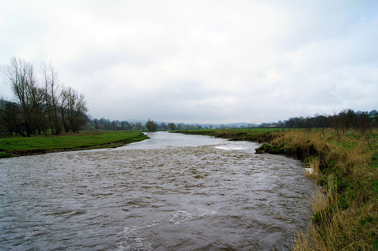 River Ribble near Sawley