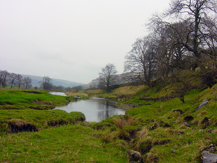 Lush landscape beside the Wharfe