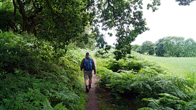Barry leads the way past Queen Charlotte's Wood