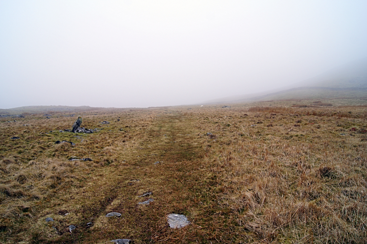 Into the fog of Moelfre in the Rhinogydd