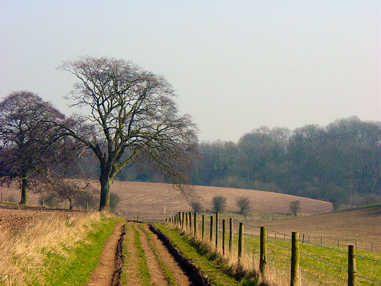 Wolds Way near Brantingham