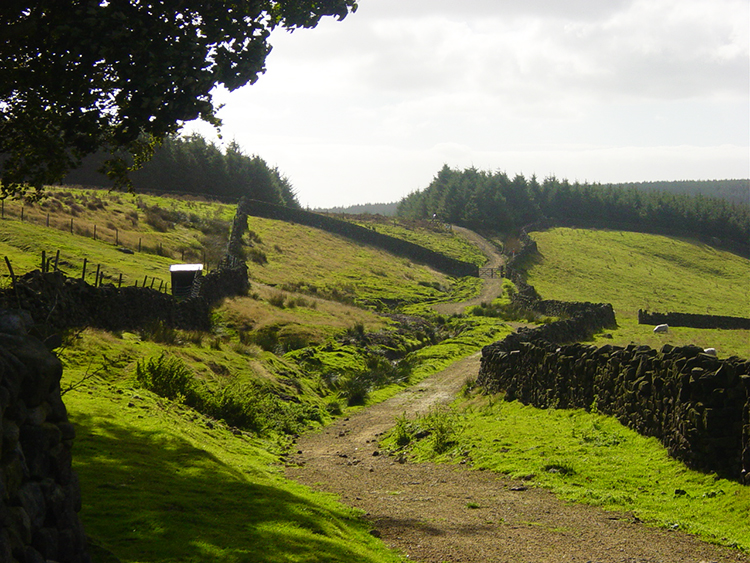 The track from Doubler Stones to High Moor