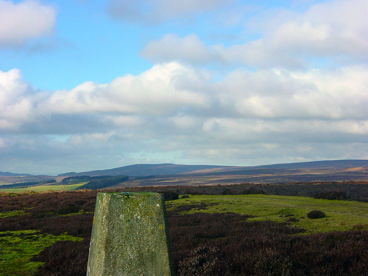 Trig pillar on Shooting House Hill