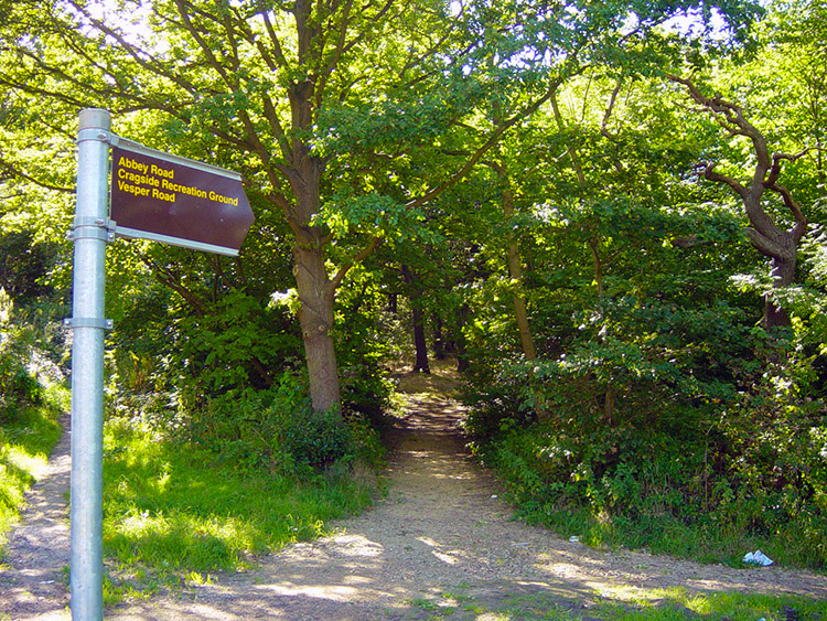 Start with a walk through Hawksworth Wood