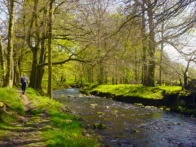 Following the River Washburn to Blubberhouses