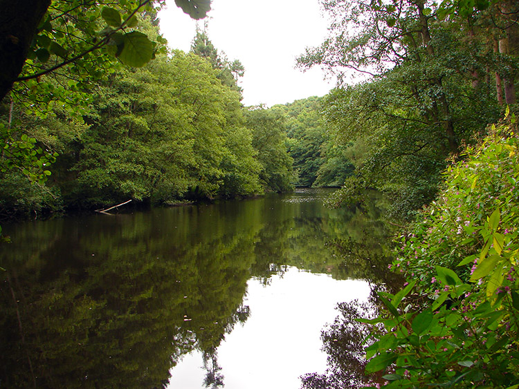 The Nidd is so quiet in places such as this