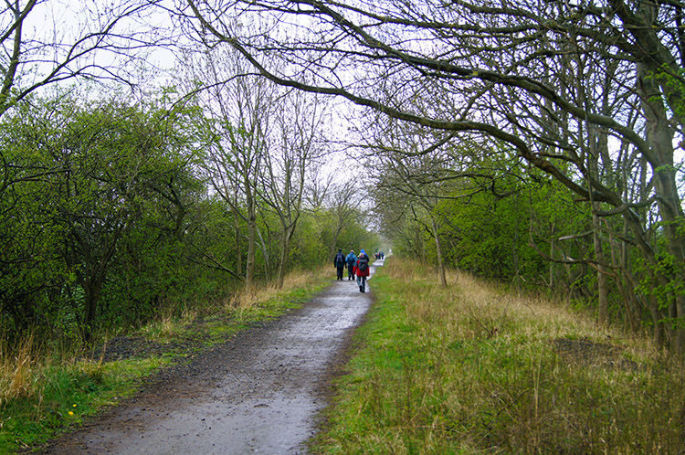 Walkers following the Harland Way