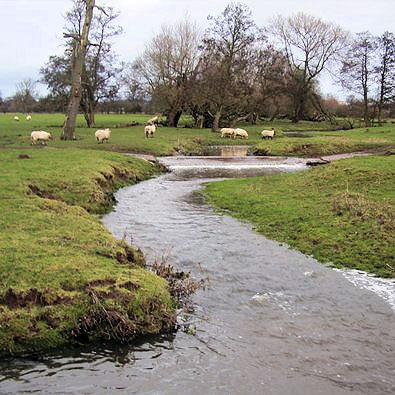 Gayton Brook