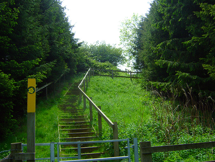 Steps leading up Buttermilk Hill