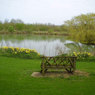 Pond at Bleak House