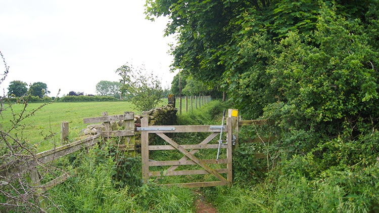 Path leading to Little Meg