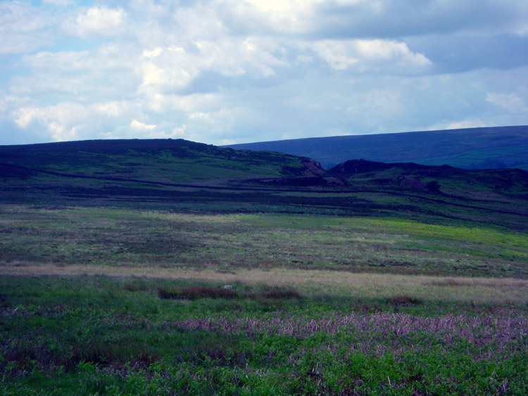 Clints Moor