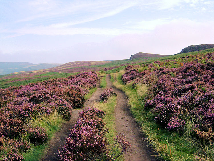 The path past Over Owler Tor and Winyards Nick