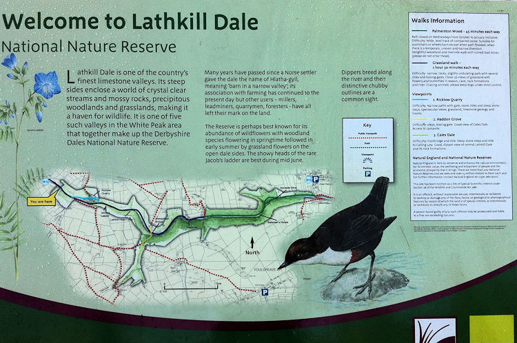 Welcome to Lathkill Dale