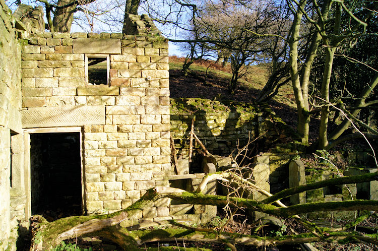 The sad remains of Rocher Head Farm