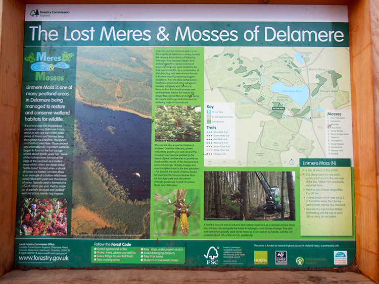 Information board in Delamere Forest