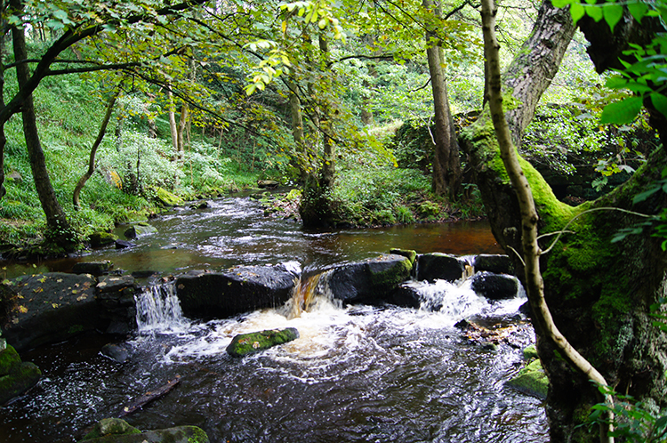 Cascades on the River Rivelin