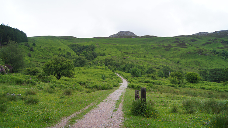 Access path to the moor