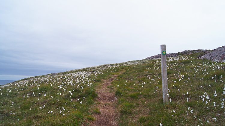 Passing a waymarker on Rubha Beag