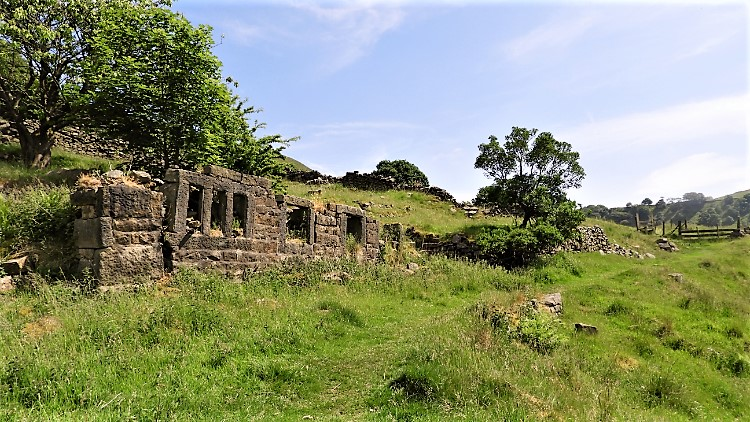 Abandoned farmstead near Wittonstall Clough